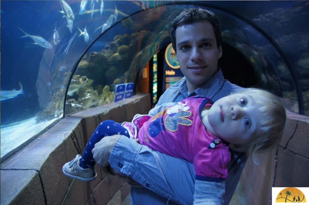 Hannover aquarium