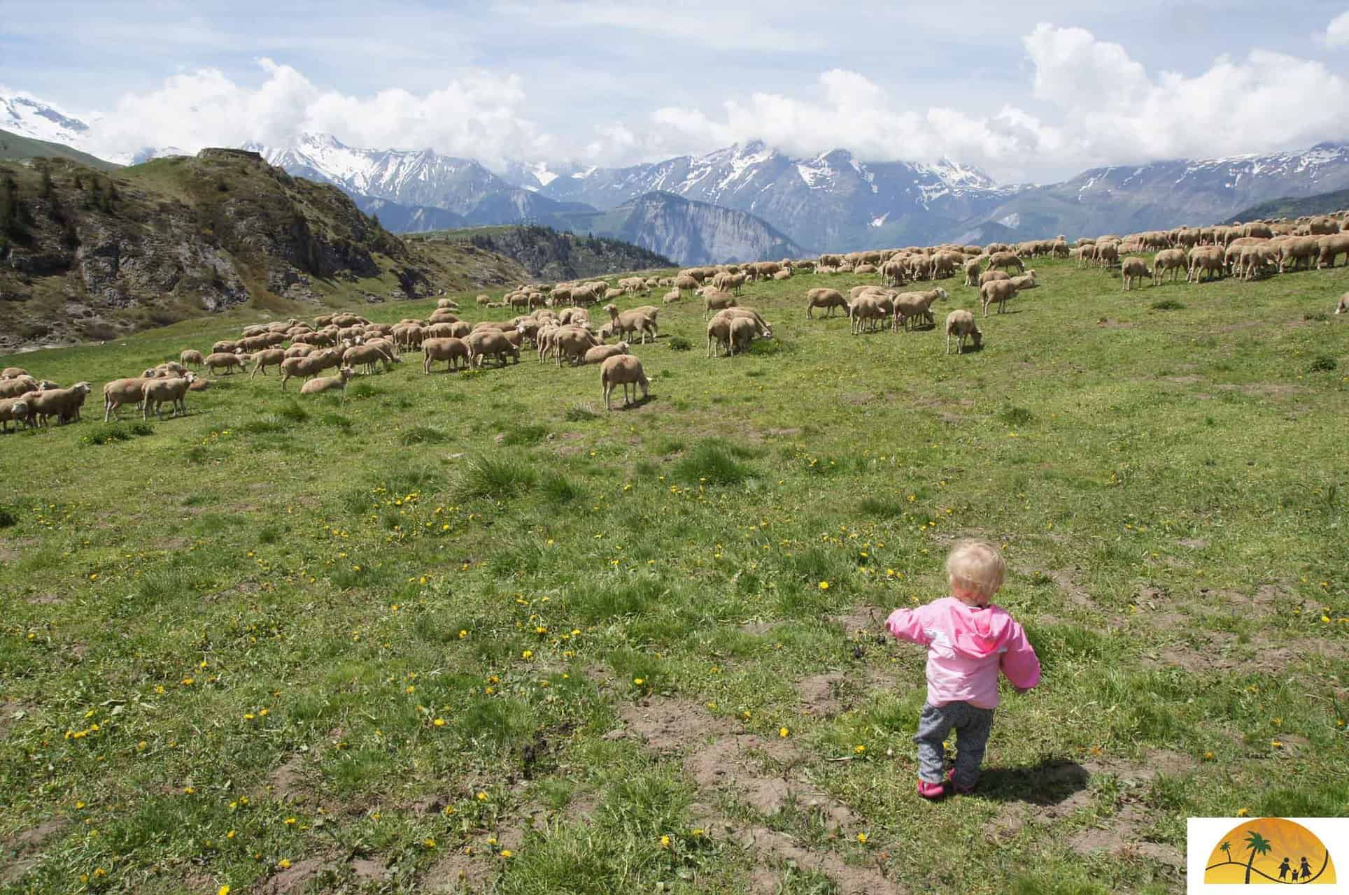 bergwandelen met baby