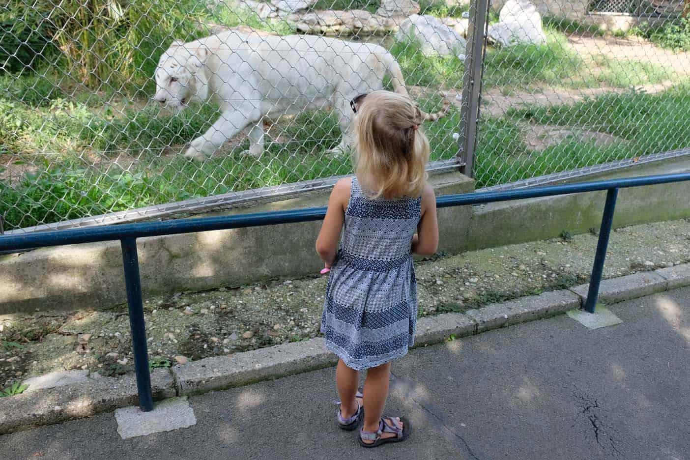 Belgrado dierentuin