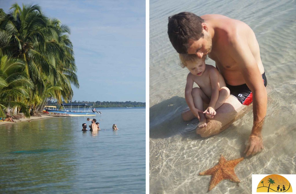 starfish beach