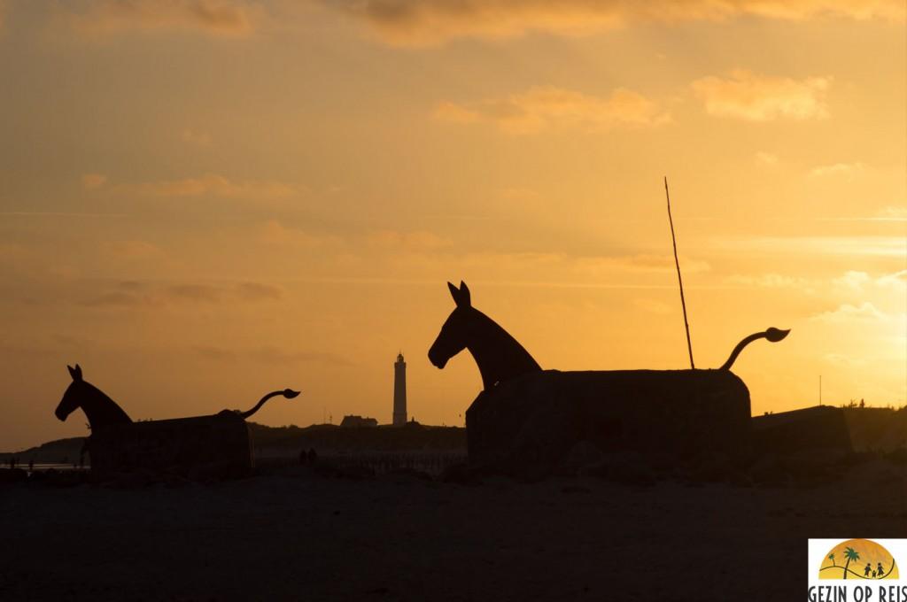 blavand paarden