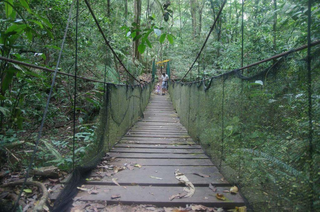 Soberania National Park wandeling