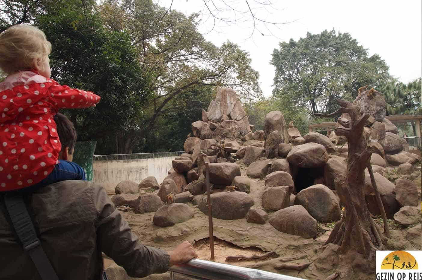 dierentuin van Guangzhou