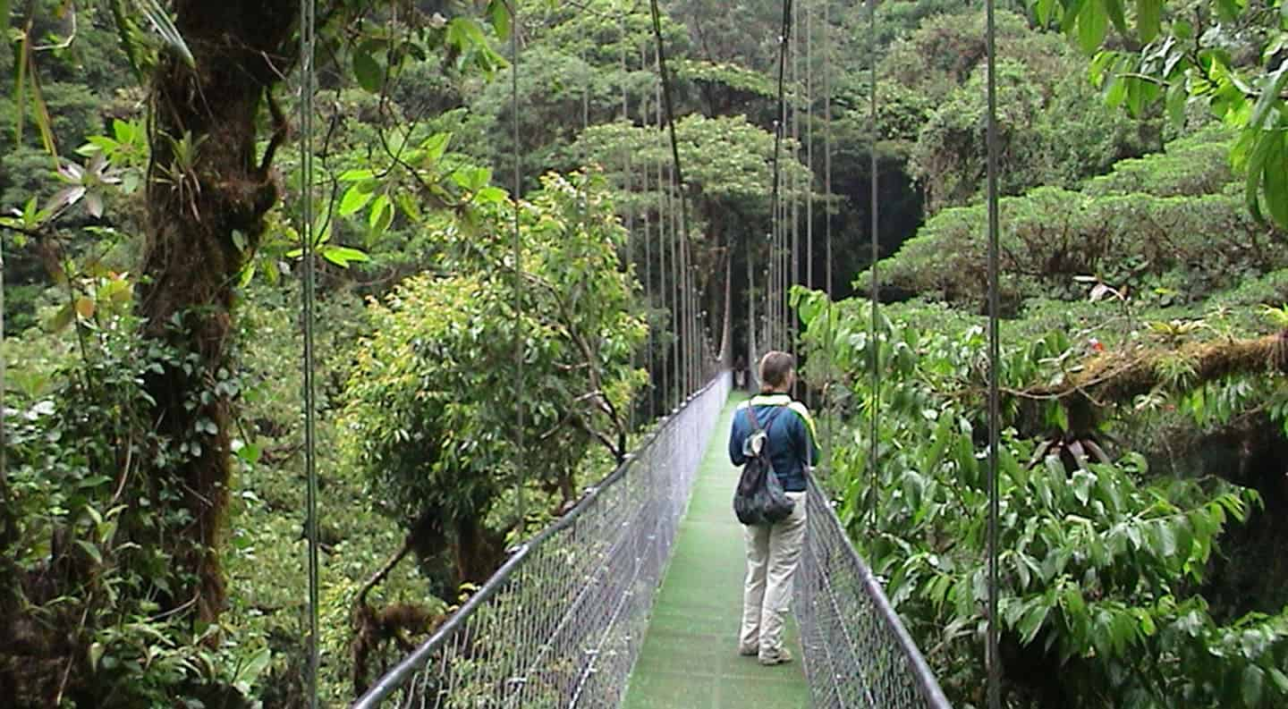 costa rica skywalk