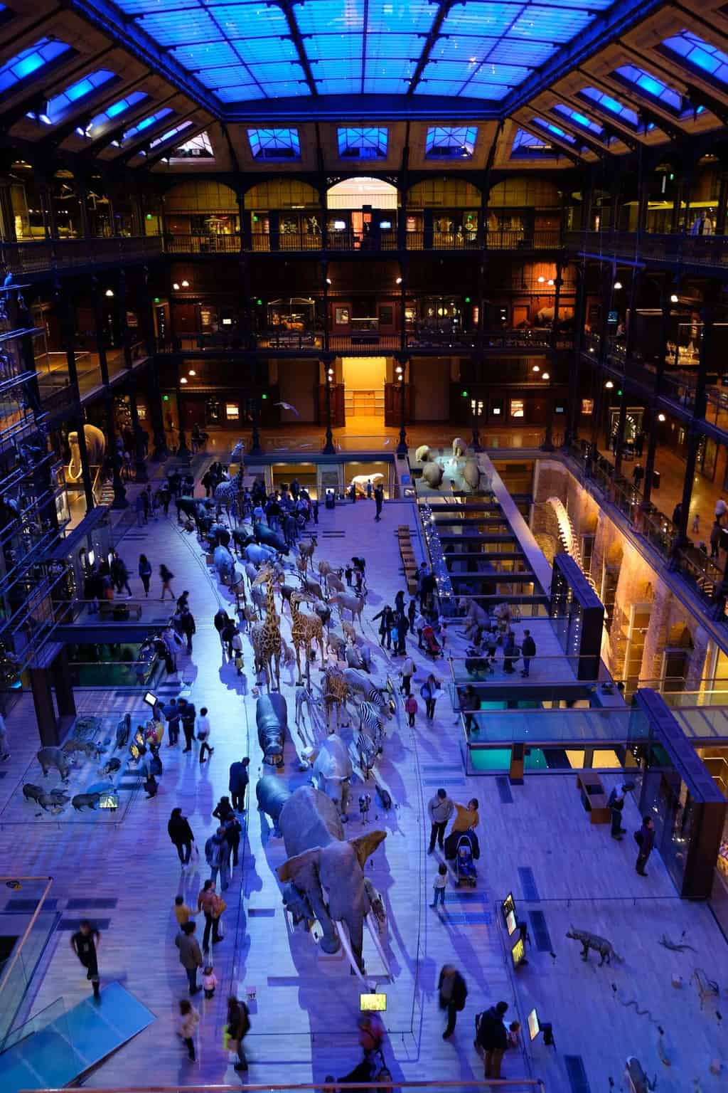 Grande Galerie de l'Evalution