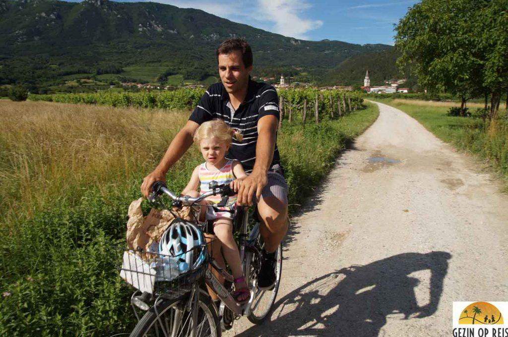 fietsen slovenie vipava vallei