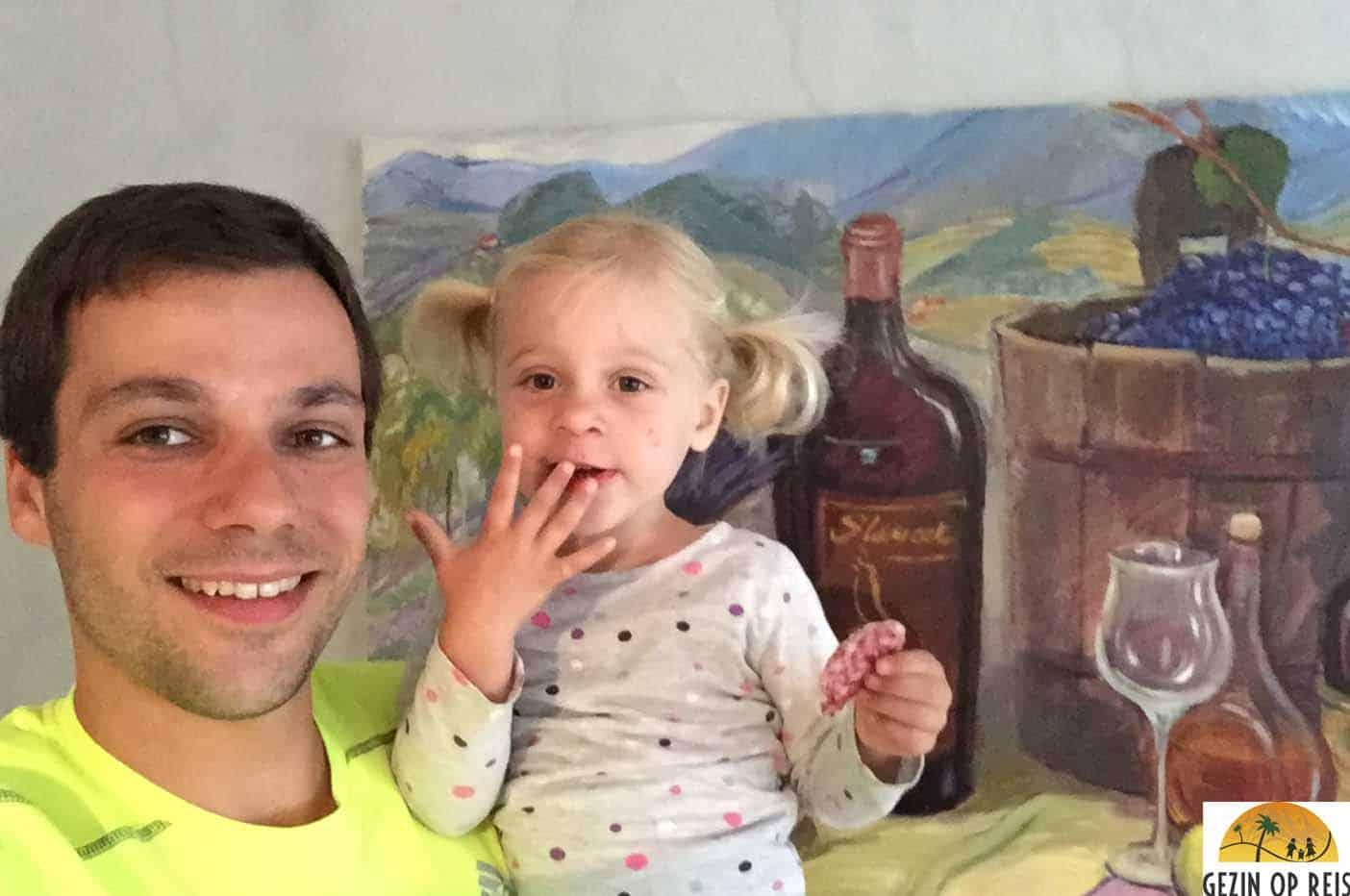 wijnhotel slovenie