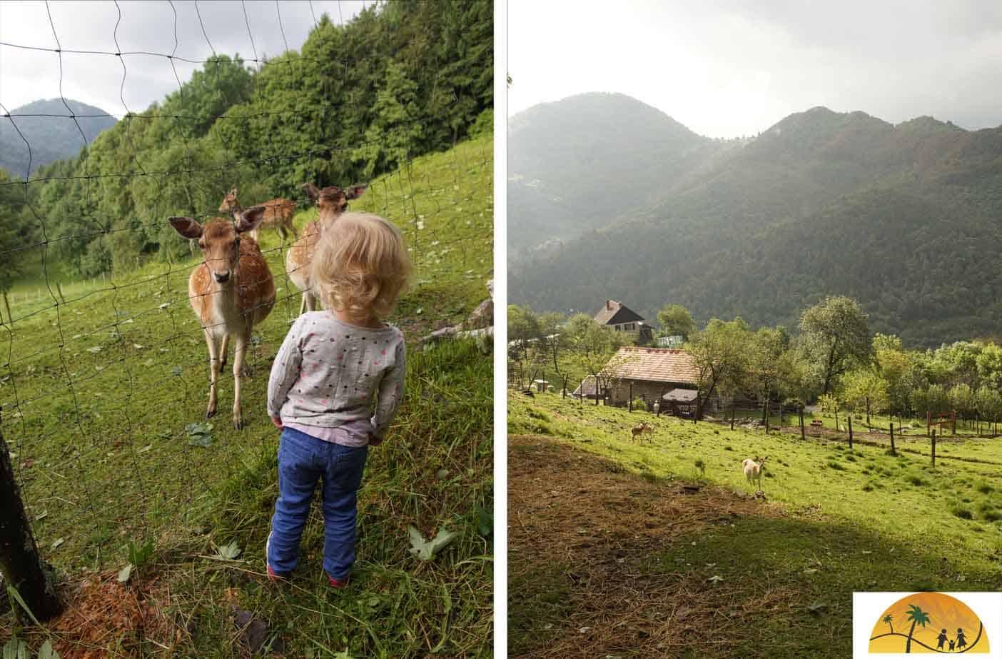 farmstay slovenie