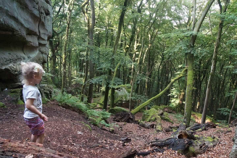luxemburg wandelroute mullertal