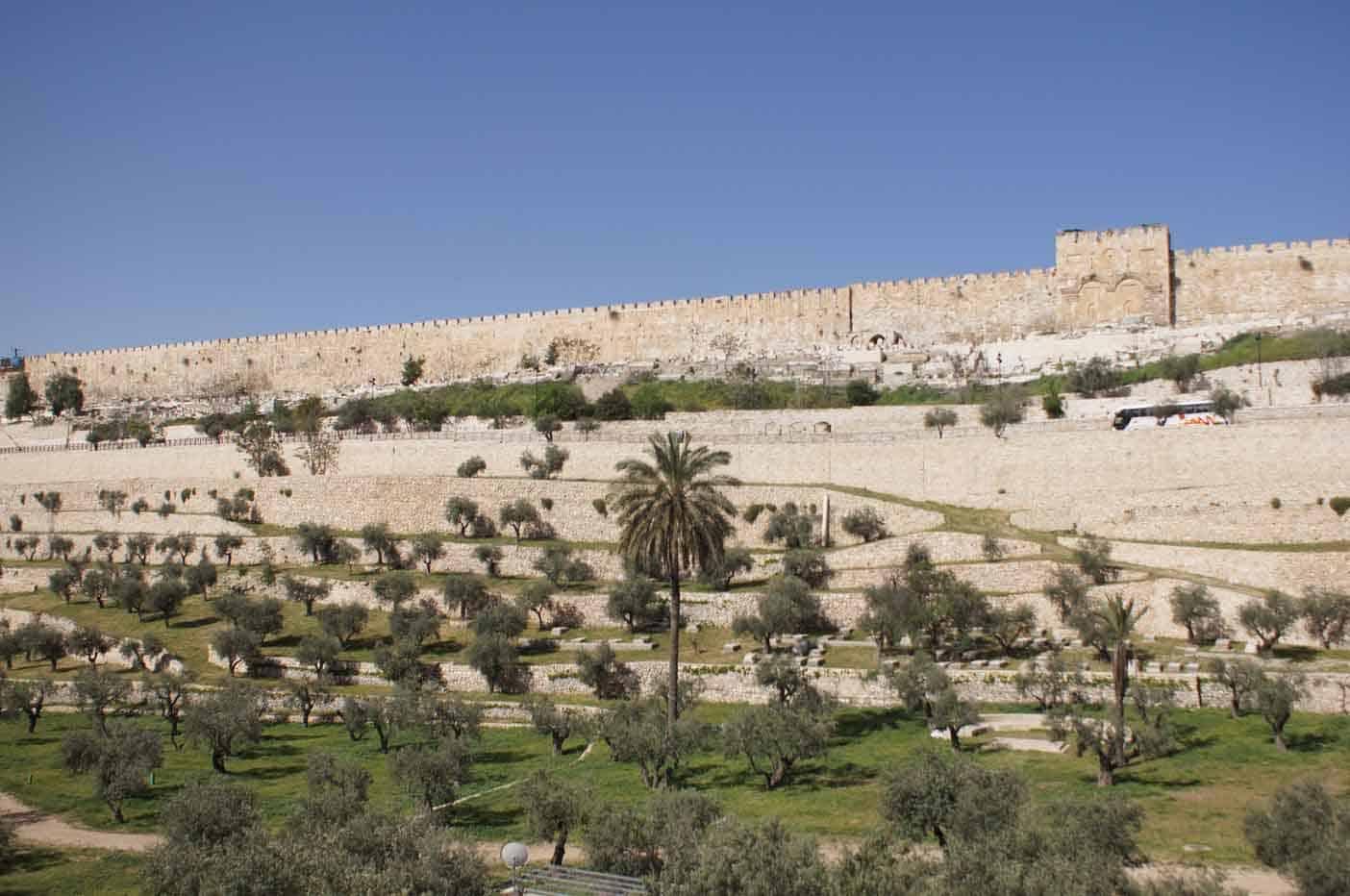 reisplanning israel