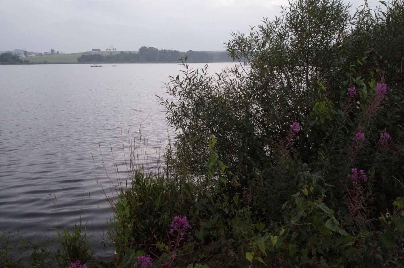 Nieder-Moos meer