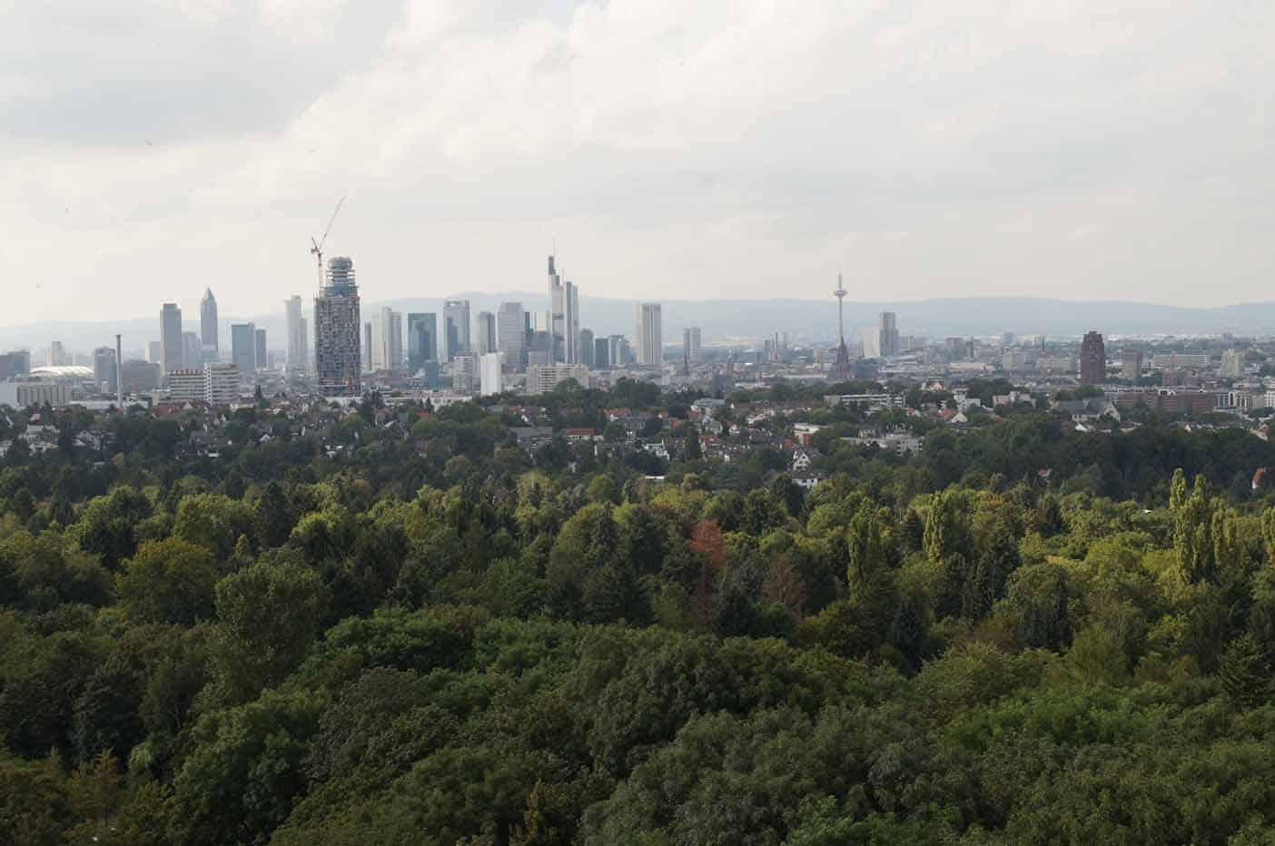 Bos speeltuin met Goethe toren