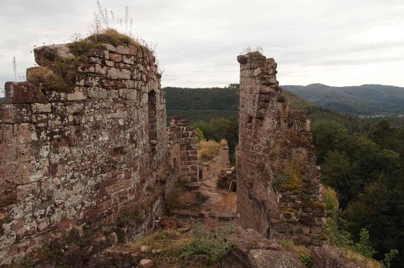 steinbeck kasteel vogezen