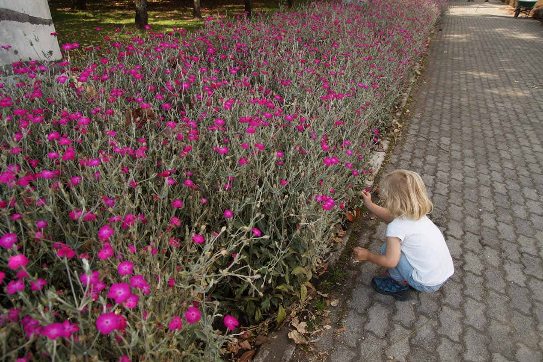 botanische tuin bogota