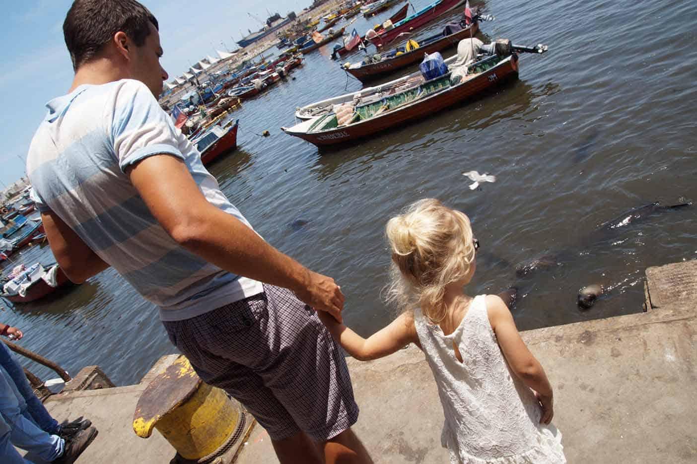 zeerobben vismarkt iquique