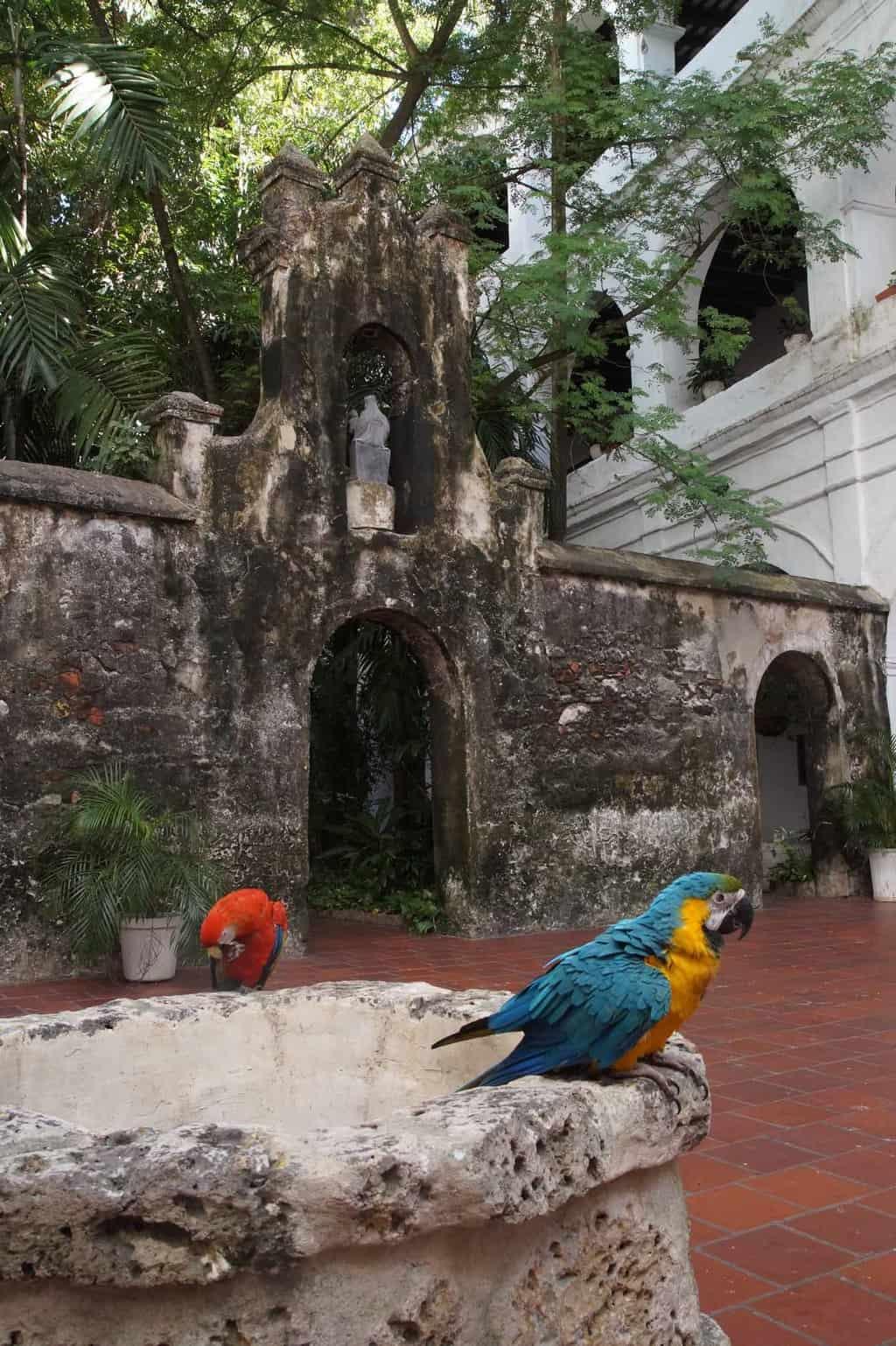 cartagena colombia kathedraal