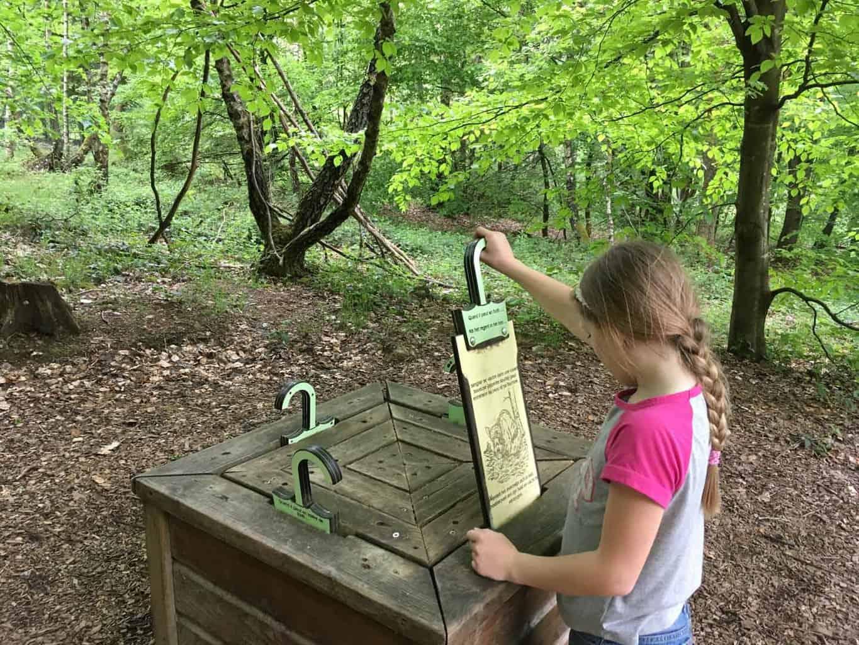 Parc Chlorophylle ardennen