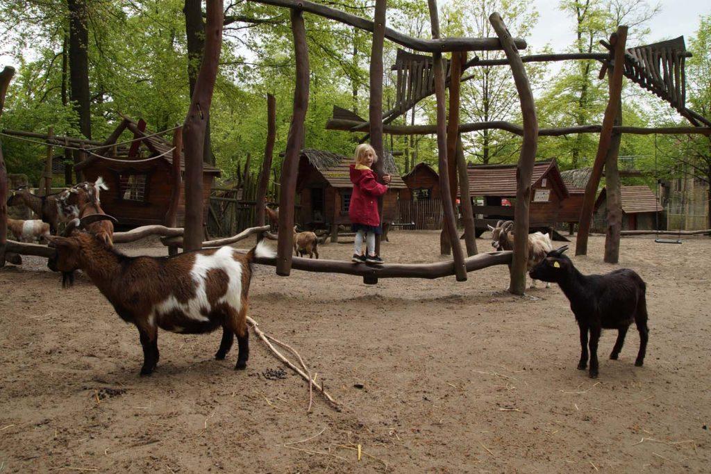 dierentuin osnabruck