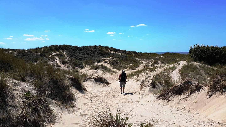 dunes marchand