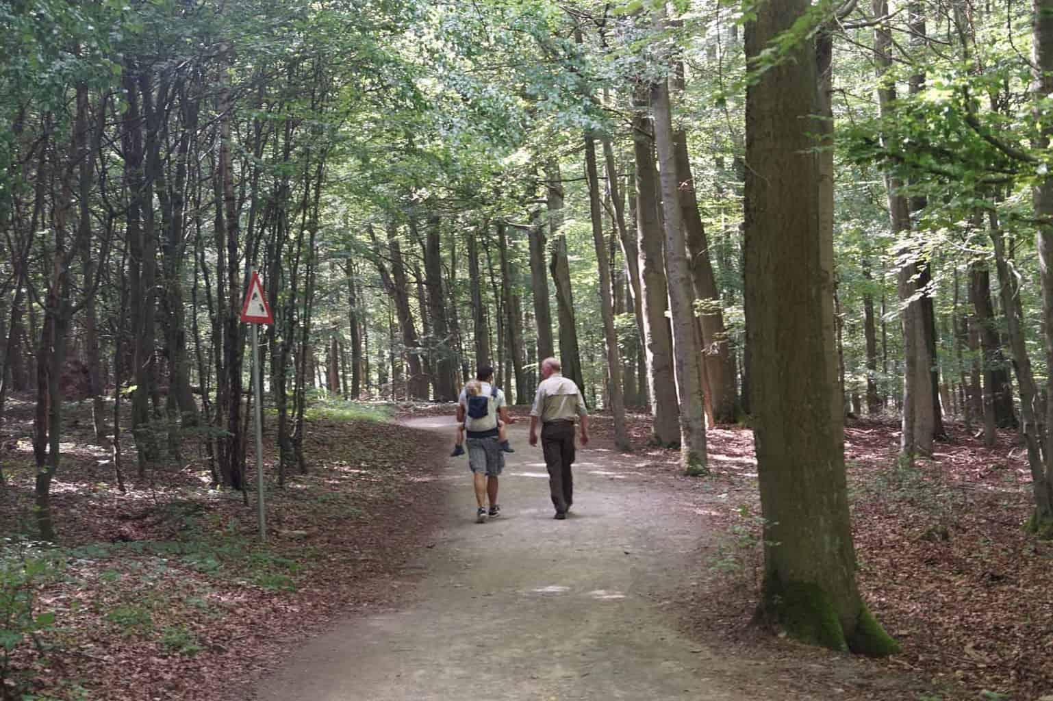 wilde weg eifel wandelen