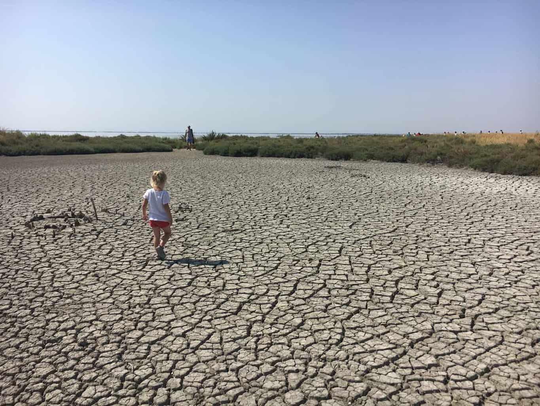 Po delta national park