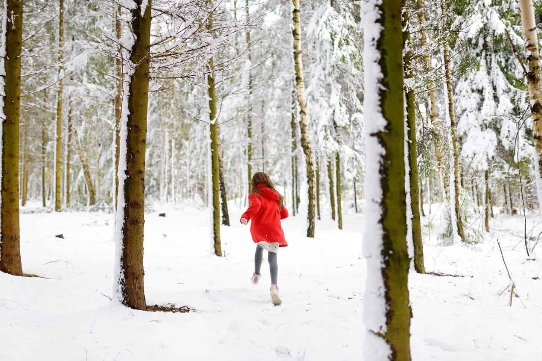 Skigebied dichtbij nederland
