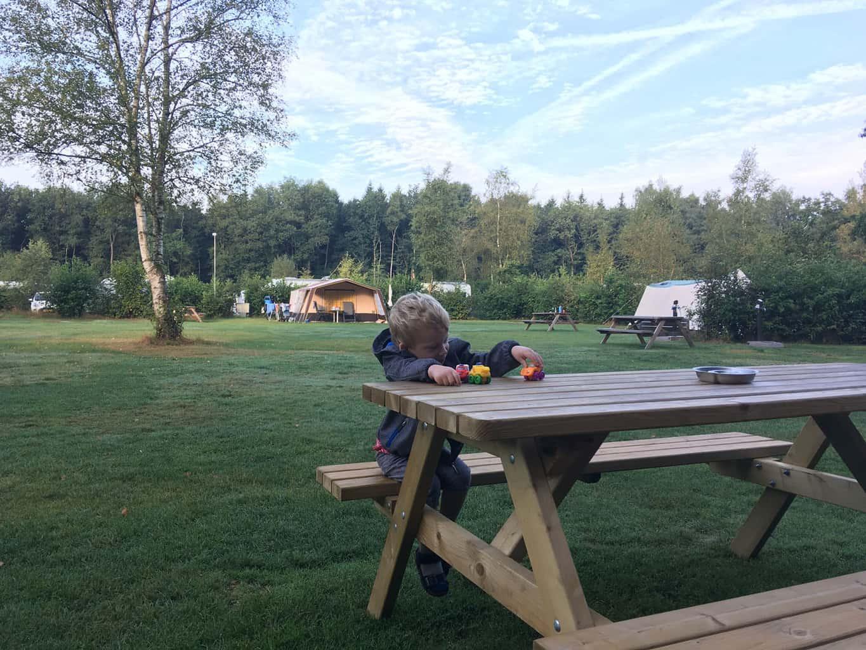 friese wouden met kinderen