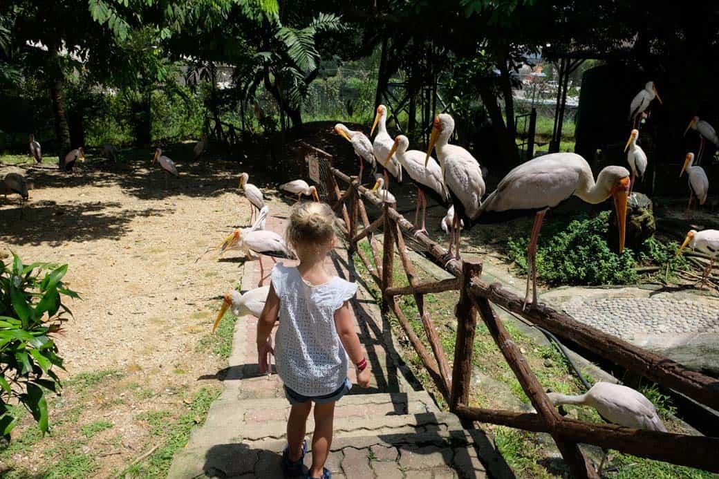 Kuala Lumpur met kinderen