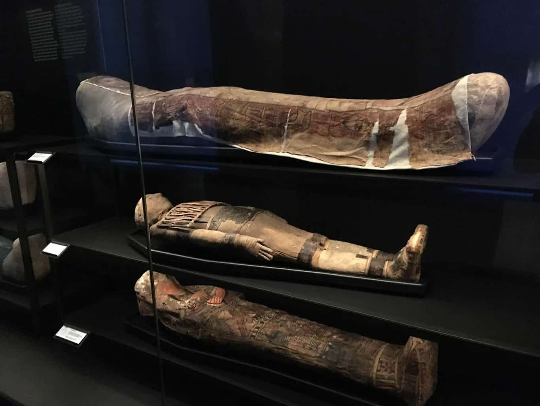 museum van oudheden