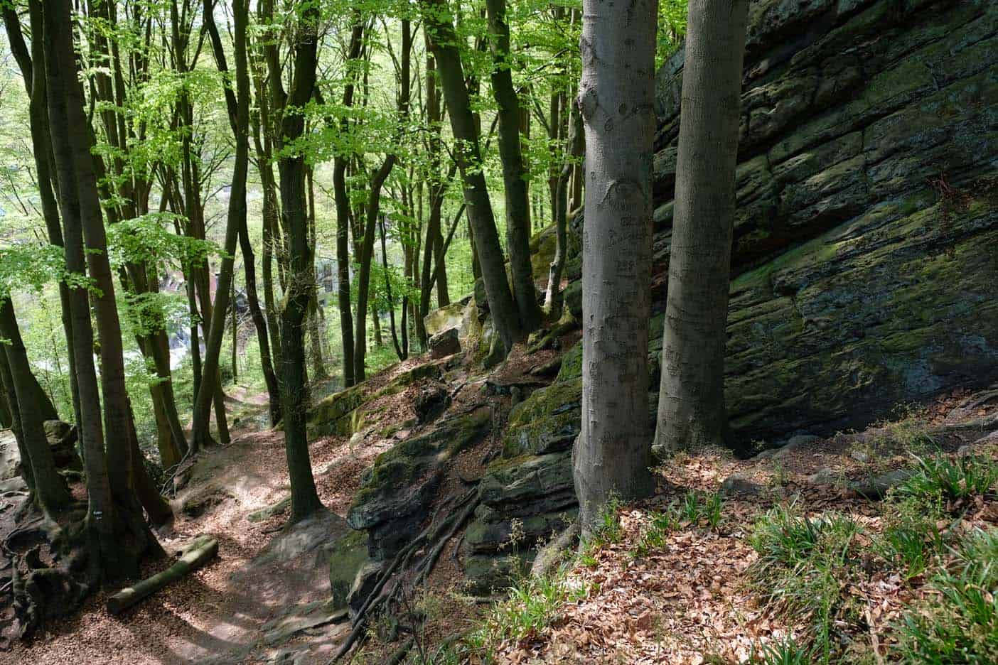 Tecklenburg wandelen heksenpad