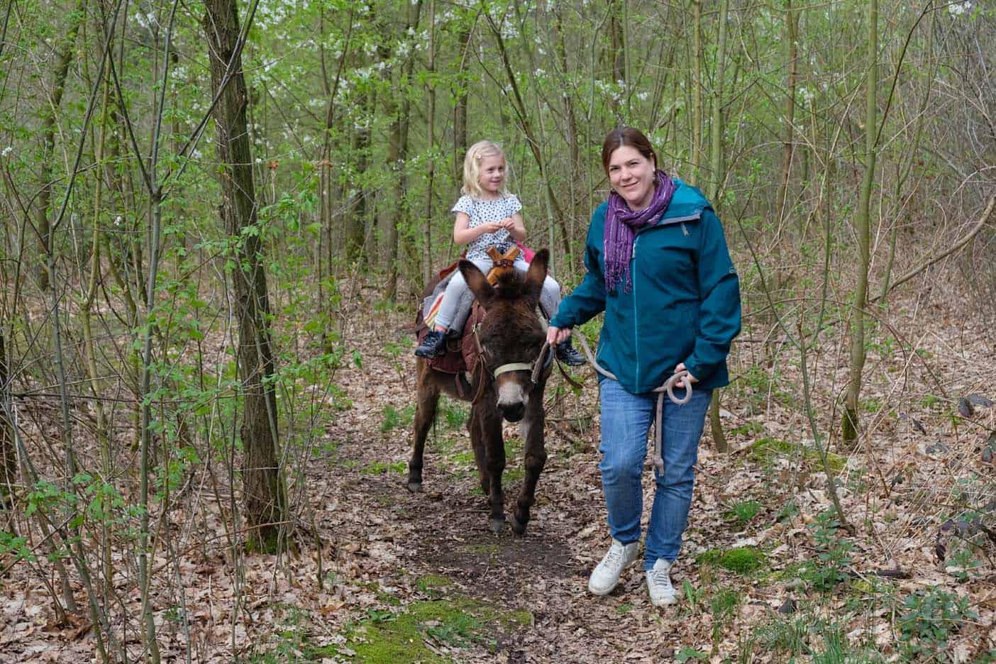 wandelen met een ezel limburg