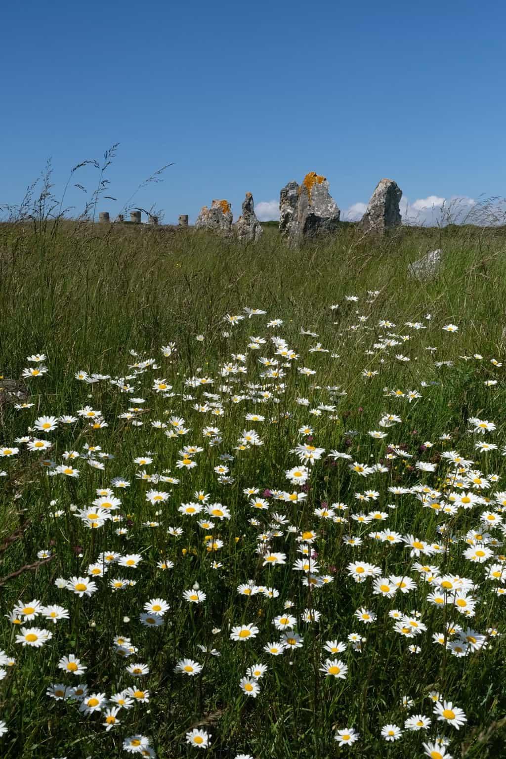Bretagne Menhir