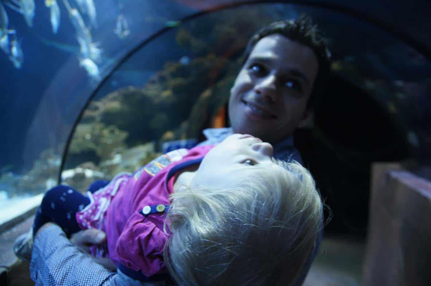 Hannover met kinderen sealife
