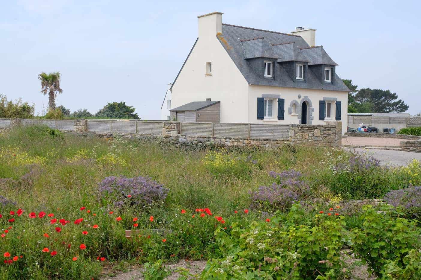 ile eiland Molène bretagne