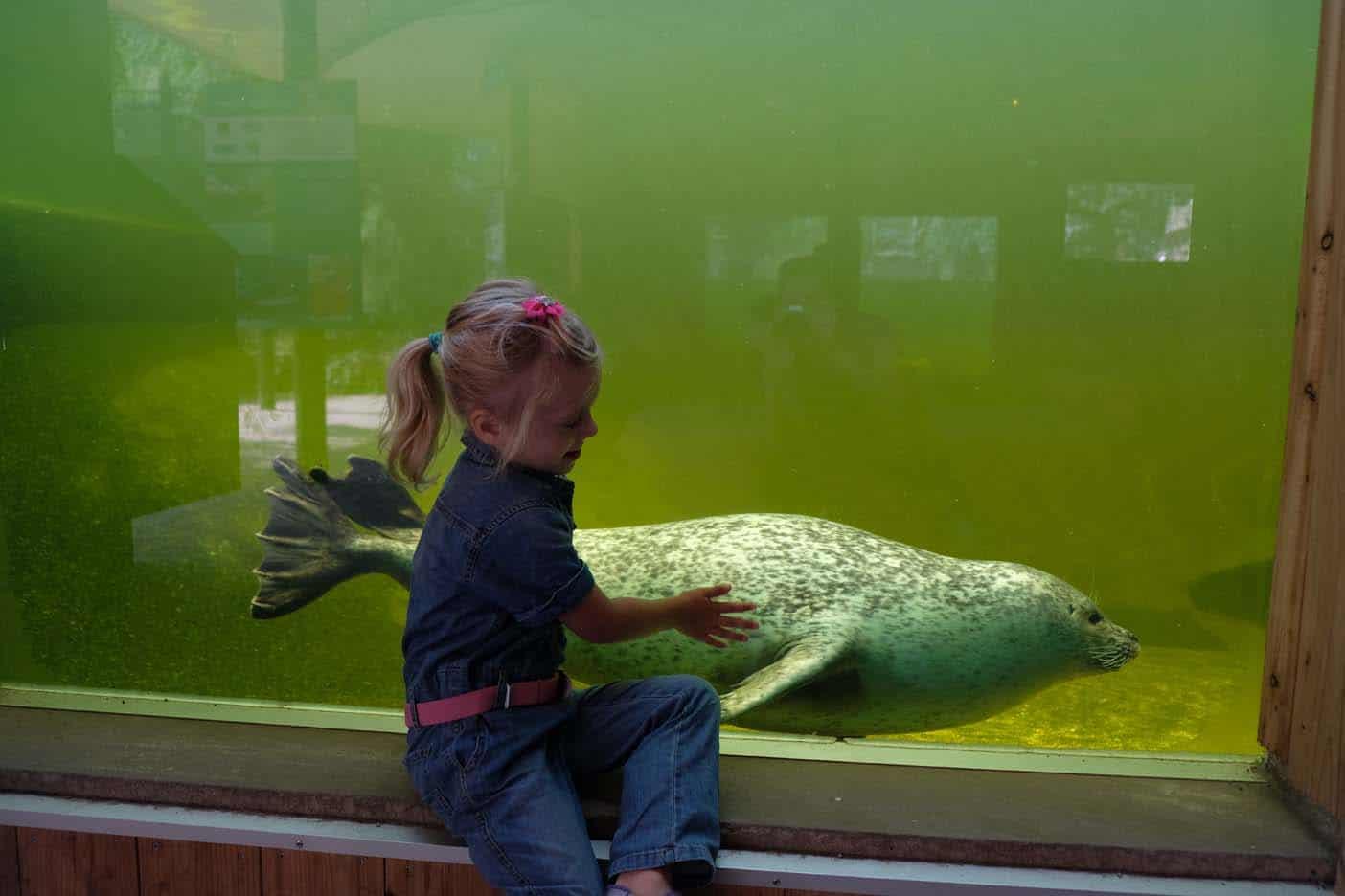rheine dierentuin naturzoo