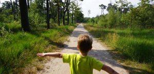 boswachterpad wandelen