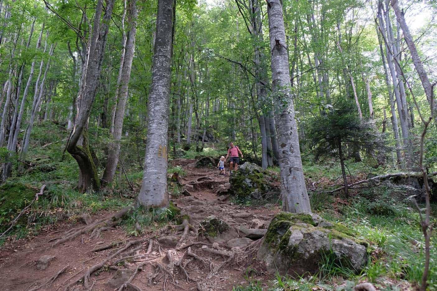 Mt vitoscha bulgarije wandelen