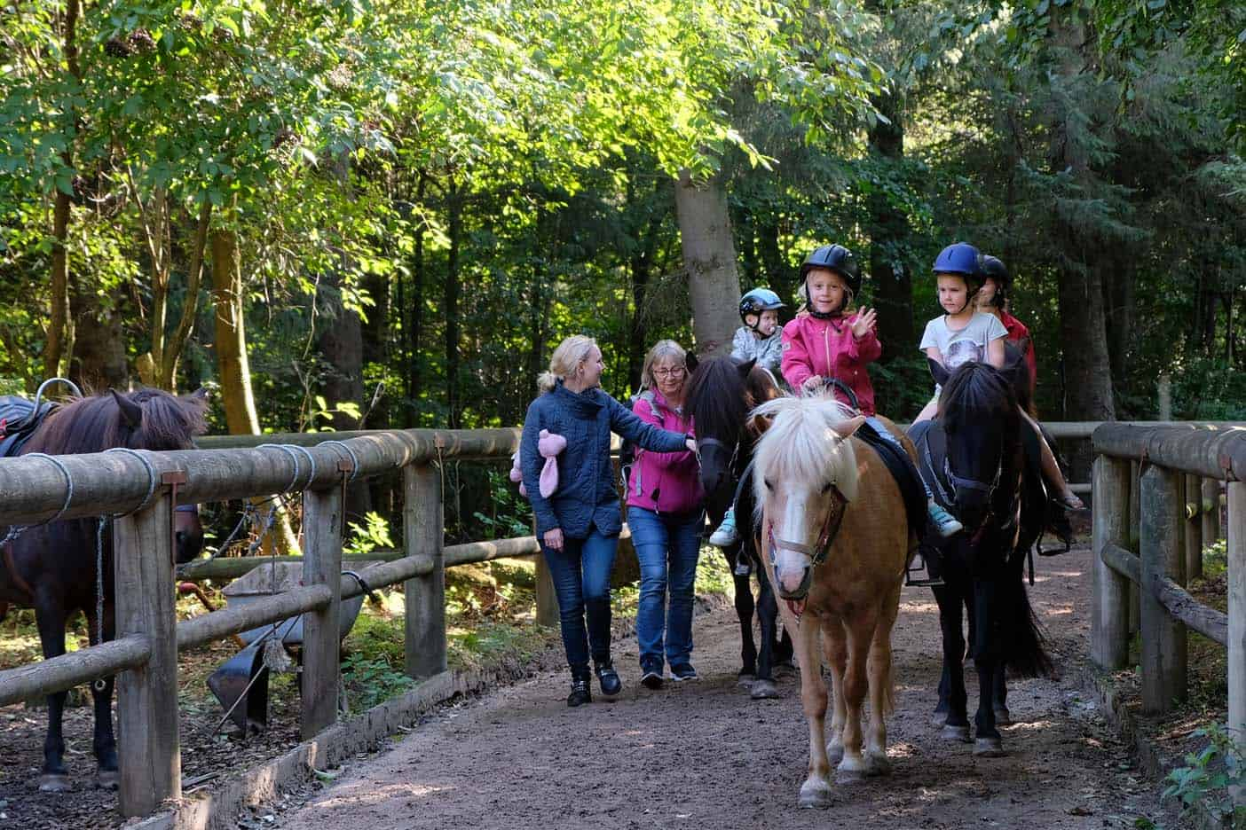 Paardrijden farup sommerland