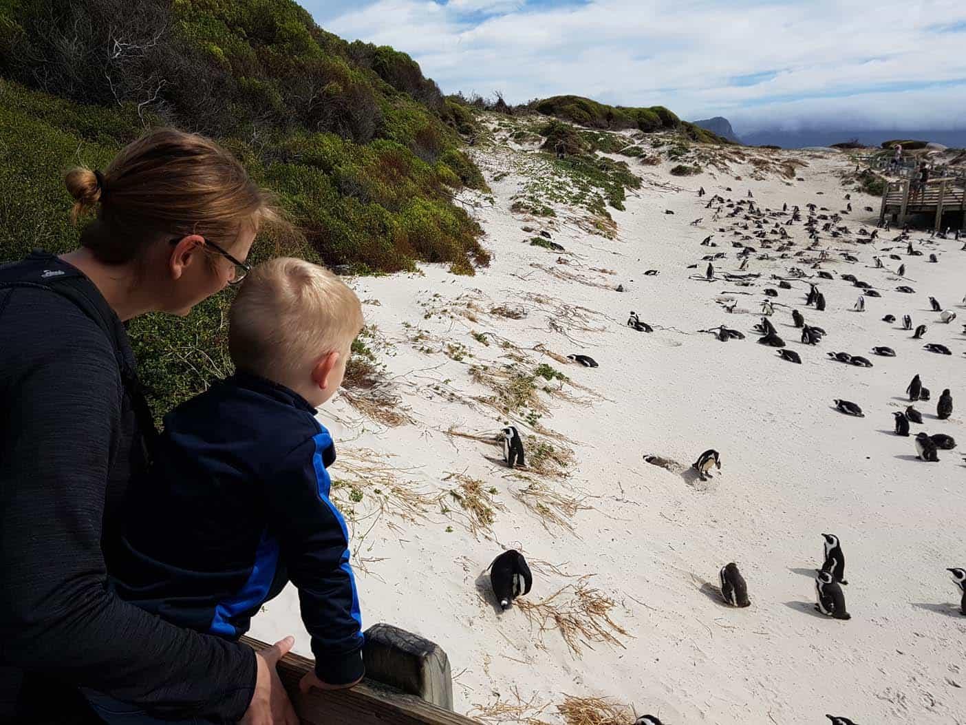 Kaapstad met kinderen