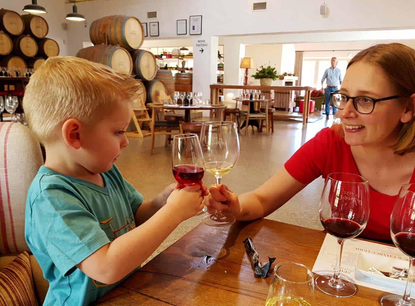 kaapstad met kinderen wijnlanden