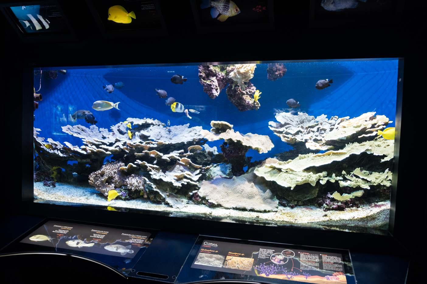 Monaco met kinderen oceanium