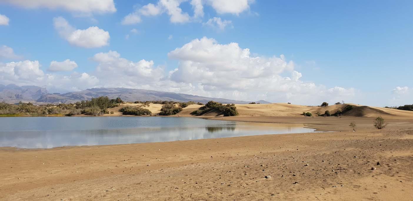 Gran canaia met kinderen stranden