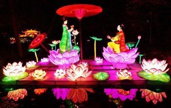 China light zoo