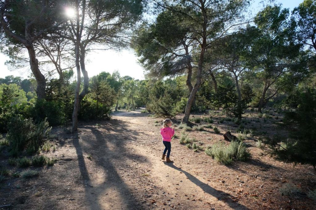 Formentera can Marroig
