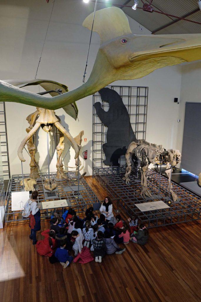 madrid met kinderen natuurhistorisch museum