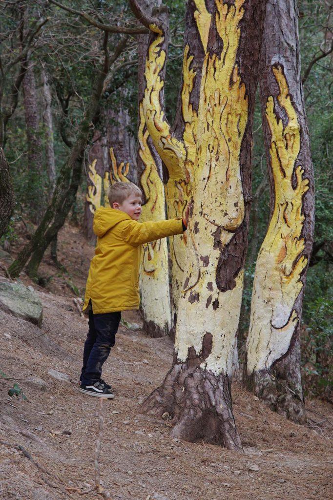 Catalonie met kinderen, paddenstoelenwandeling