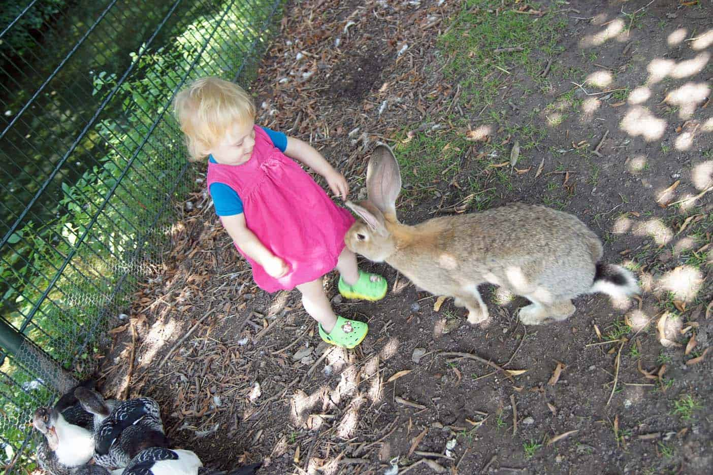Zuid-limburg met kinderen kasteelpark bonn