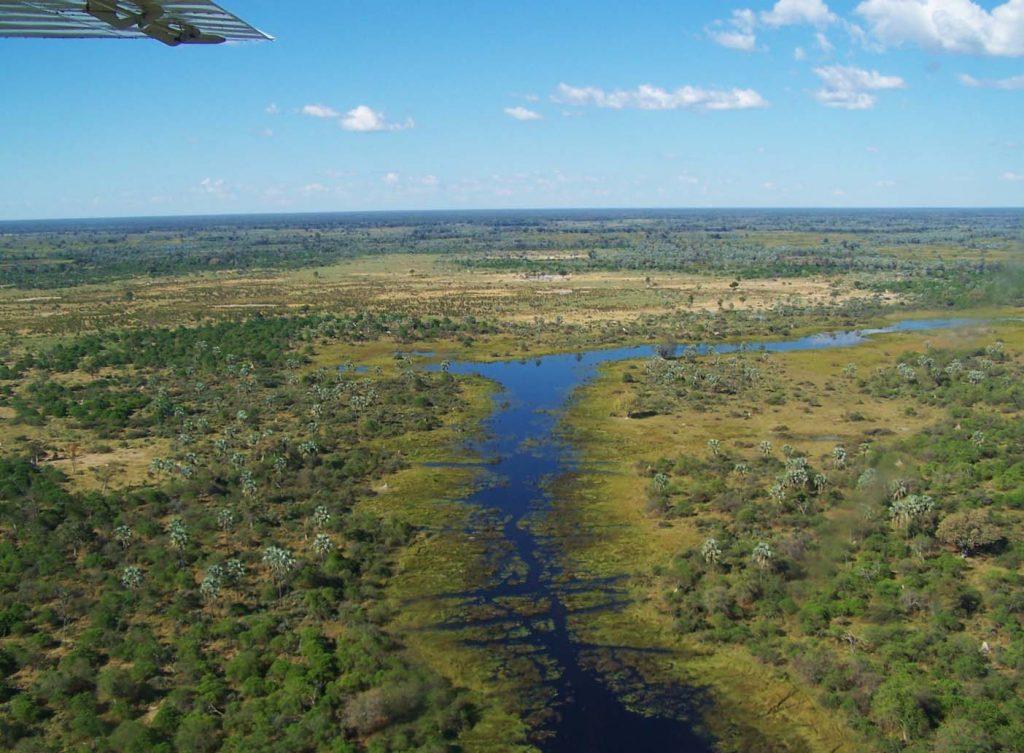 Okavangodelta vlucht