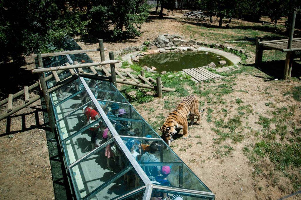 dierentuin ardeche