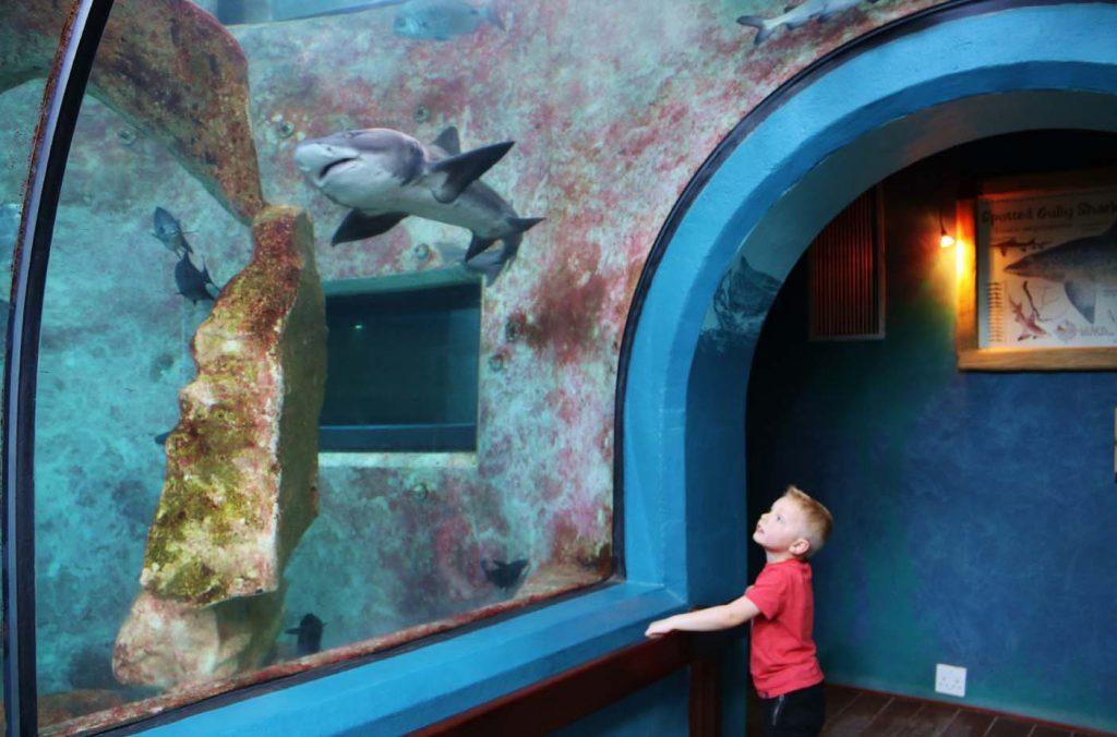Swakopund aquarium